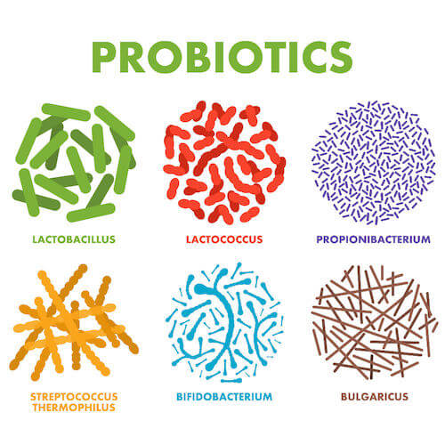 پروبیوتیک